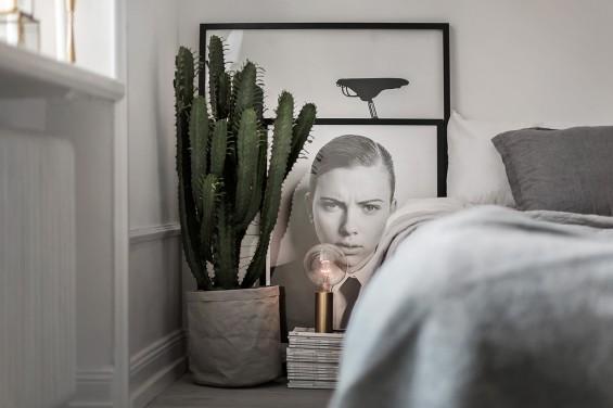Charles Ray and Coco - Scandinavian interior 8