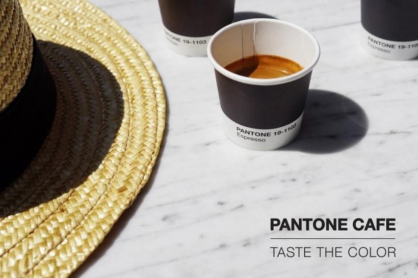 Charles Ray and Coco - blog decoration et design - bordeaux - Café Pantone - Taste of colors