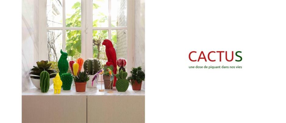 cactus-bougie