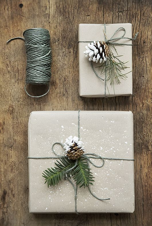 paquet-cadeaux-kraft-vegetale-pin-noel-charlesrayandcoco-blog-decoration-design-bordeaux