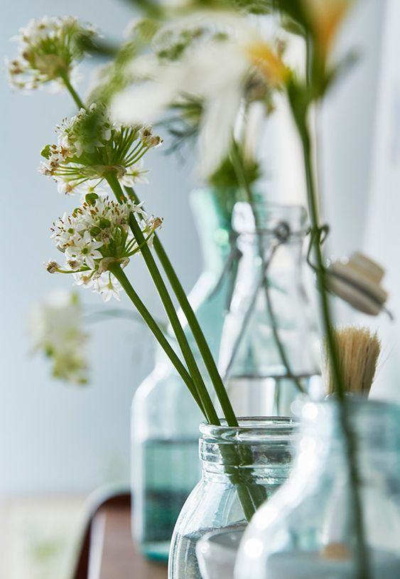 charlesrayandcoco- blog deco et design - selection déco - esprit - plante
